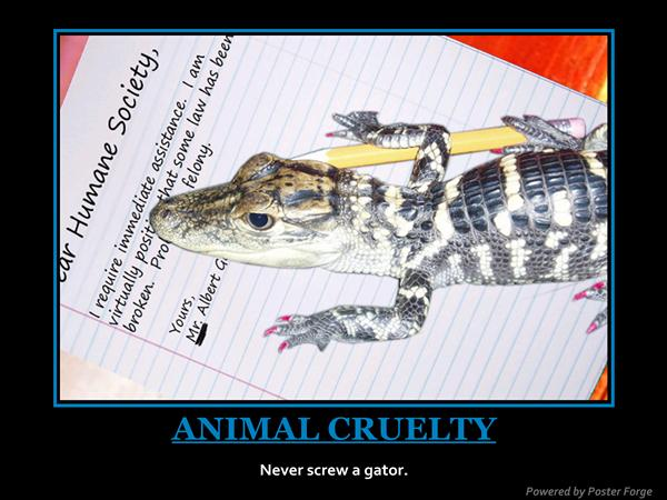 Getting sued by a reptile is painful.  Who can you get to represent you?