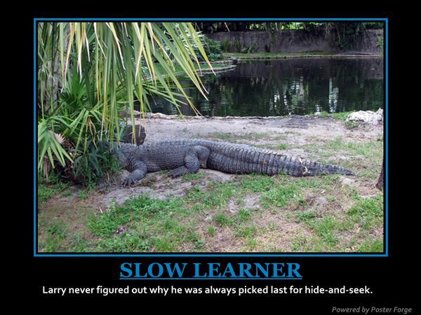 slowlearner.jpg